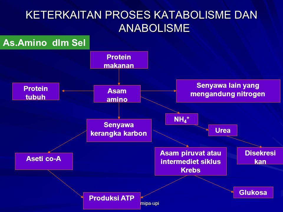 Bab Iv Metabolisme Proses Pembentukan Atau Penguraian Zat Di Dalam Sel Yang Disertai Dengan