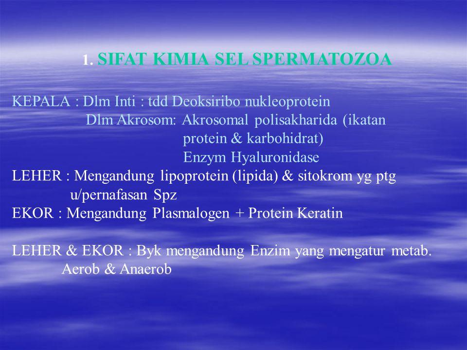 1. SIFAT KIMIA SEL SPERMATOZOA