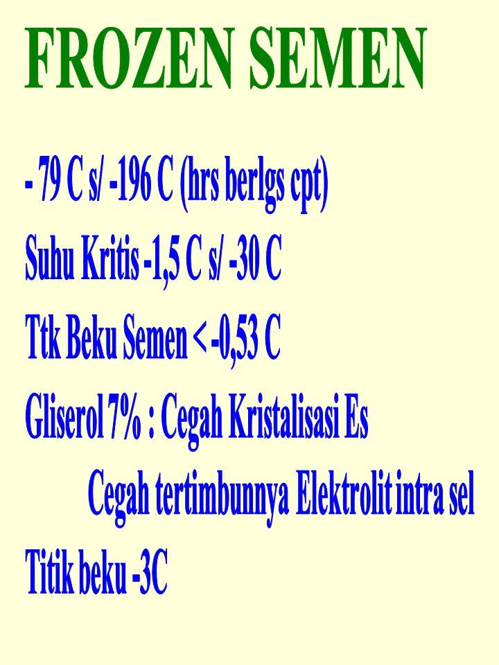 FROZEN SEMEN - 79 C s/ -196 C (hrs berlgs cpt) Suhu Kritis -1,5 C s/ -30 C. Ttk Beku Semen < -0,53 C.