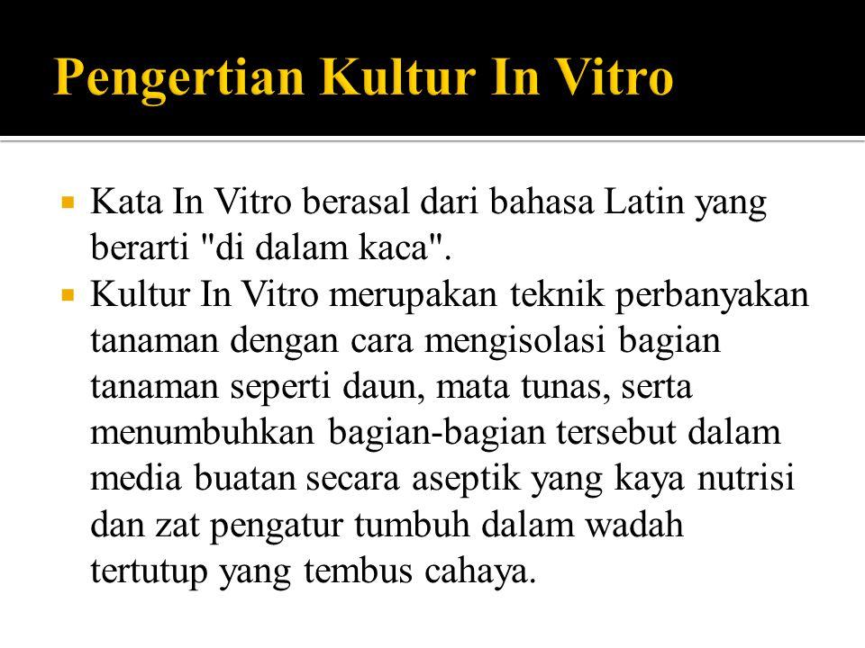 Pengertian Kultur In Vitro