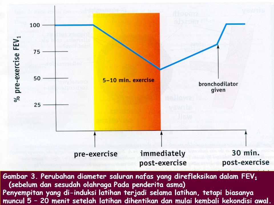 Gambar 3. Perubahan diameter saluran nafas yang direfleksikan dalam FEV1