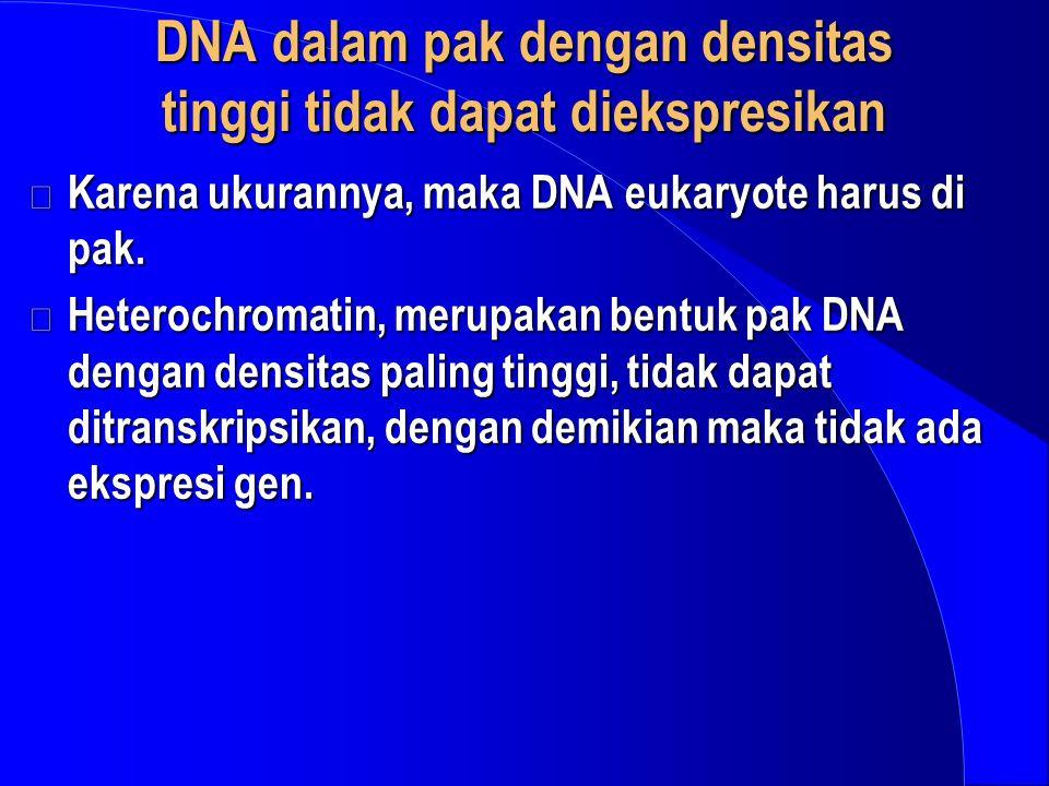 DNA dalam pak dengan densitas tinggi tidak dapat diekspresikan