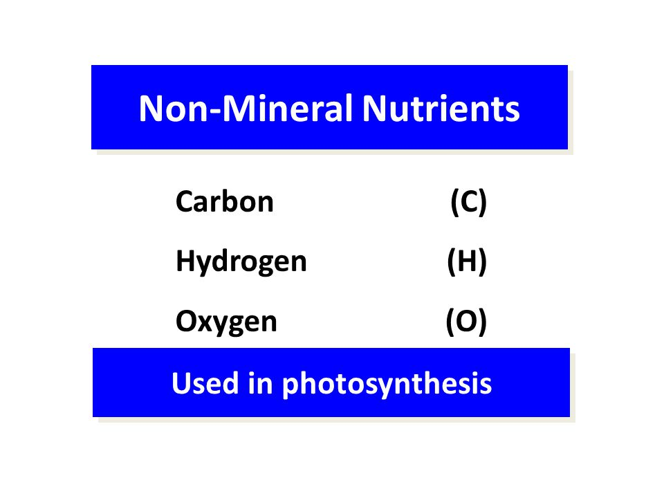 Non-Mineral Nutrients