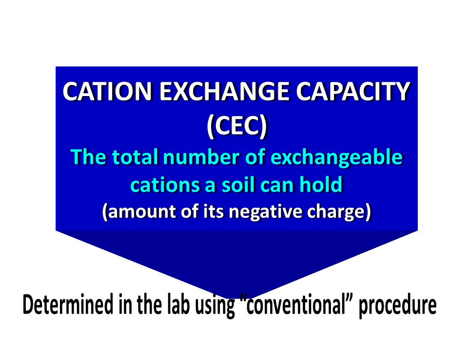CATION EXCHANGE CAPACITY (CEC) The total number of exchangeable cations a soil can hold (amount of its negative charge)