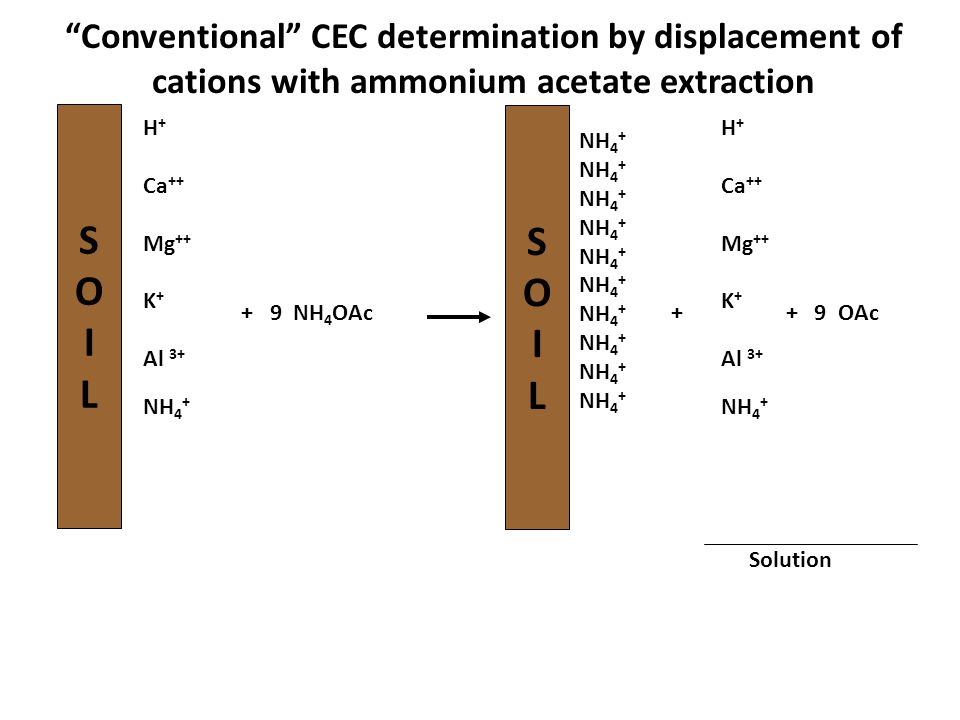Conventional CEC determination by displacement of cations with ammonium acetate extraction