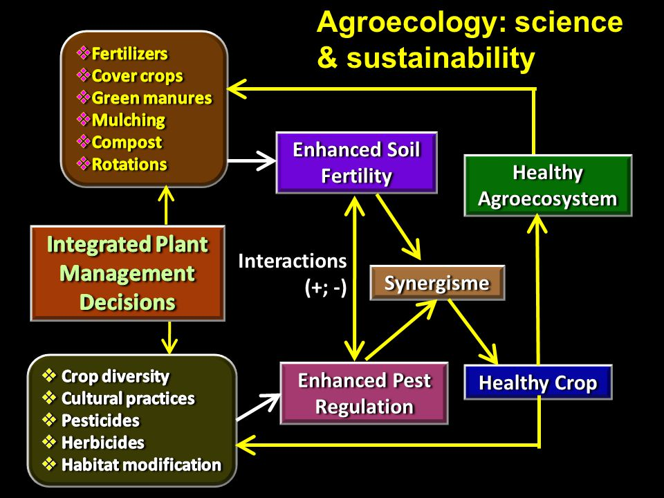 Agroecology: science & sustainability