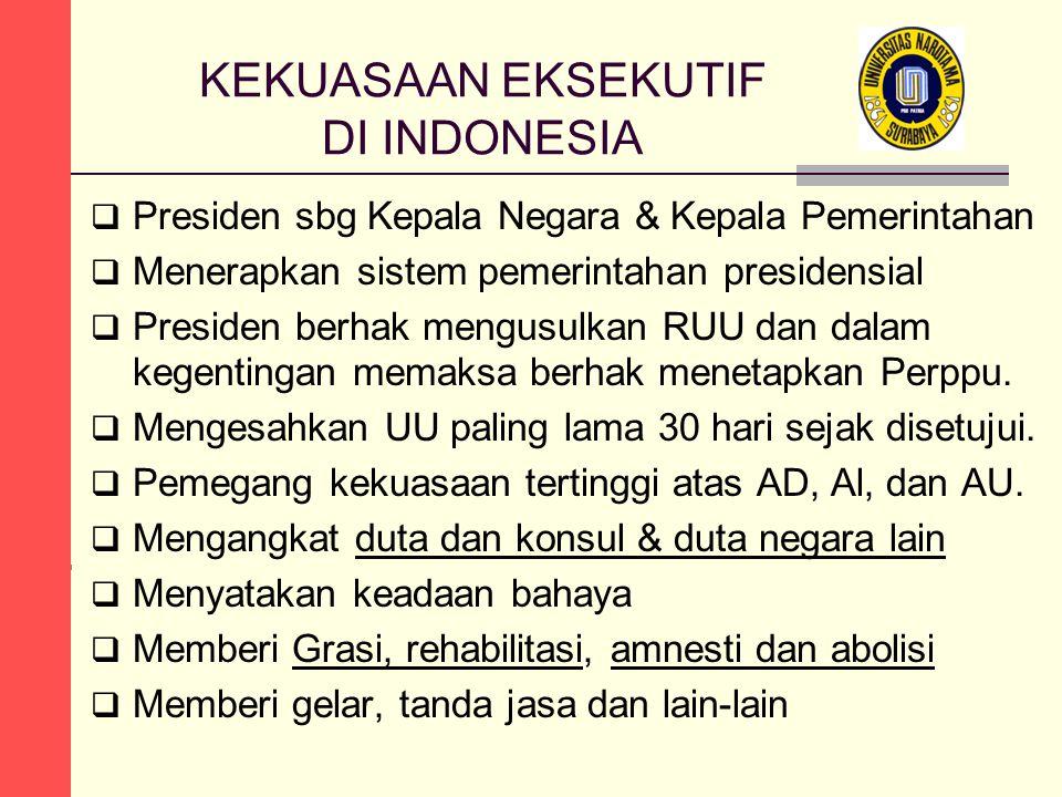 KEKUASAAN EKSEKUTIF DI INDONESIA