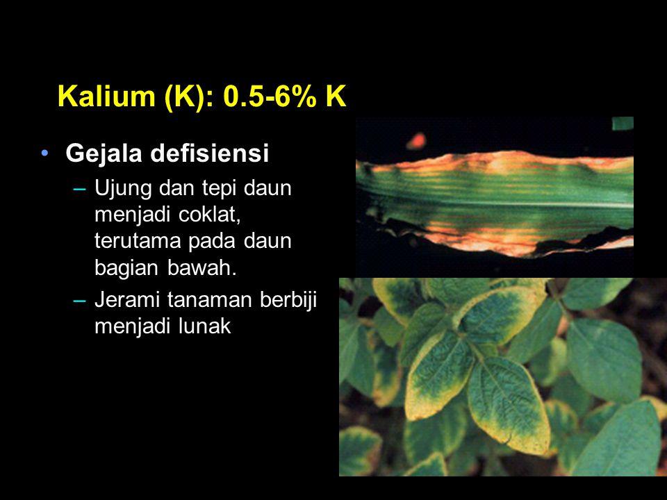 Kalium (K): 0.5-6% K Gejala defisiensi
