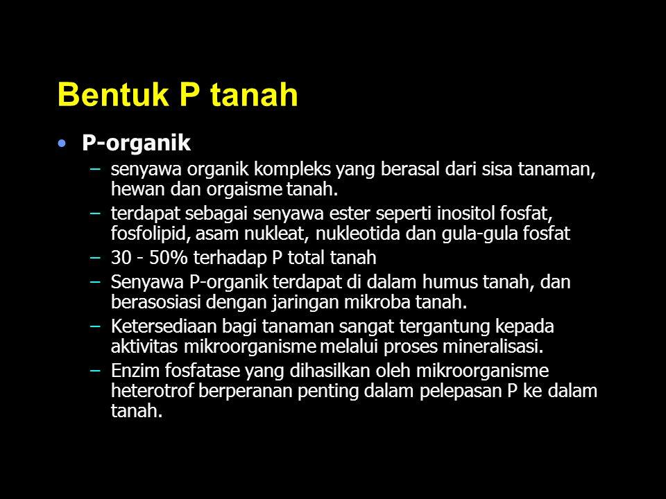 Bentuk P tanah P-organik