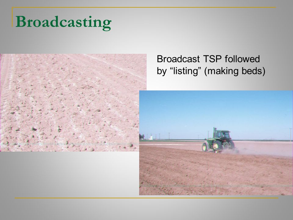 Broadcasting Broadcast TSP followed by listing (making beds)
