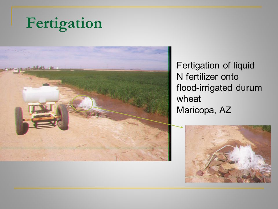 Fertigation Fertigation of liquid N fertilizer onto