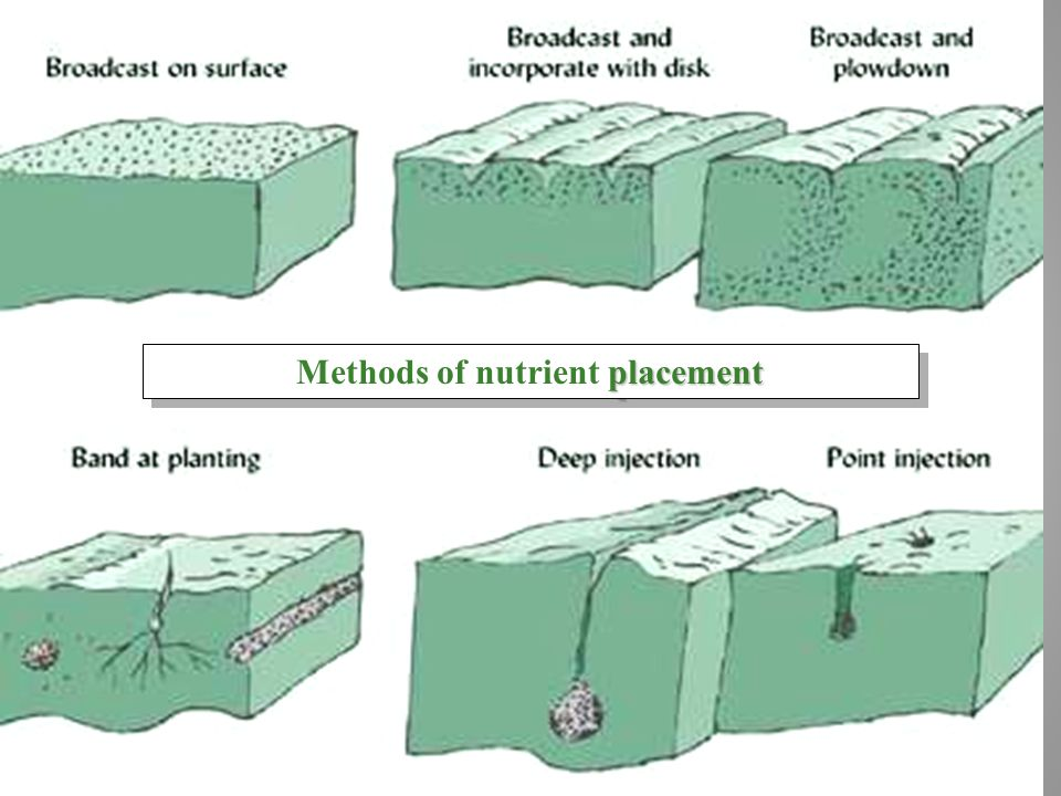 Methods of nutrient placement