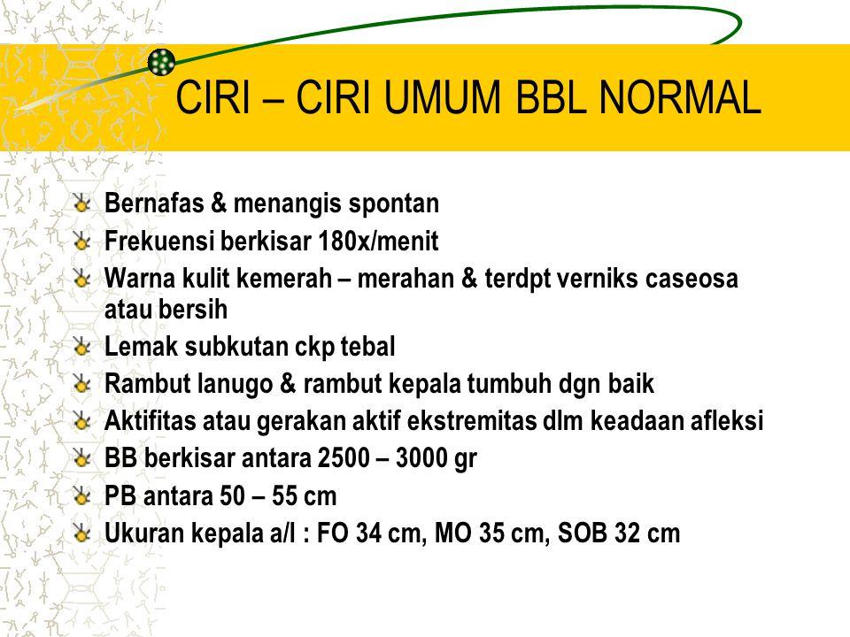CIRI – CIRI UMUM BBL NORMAL