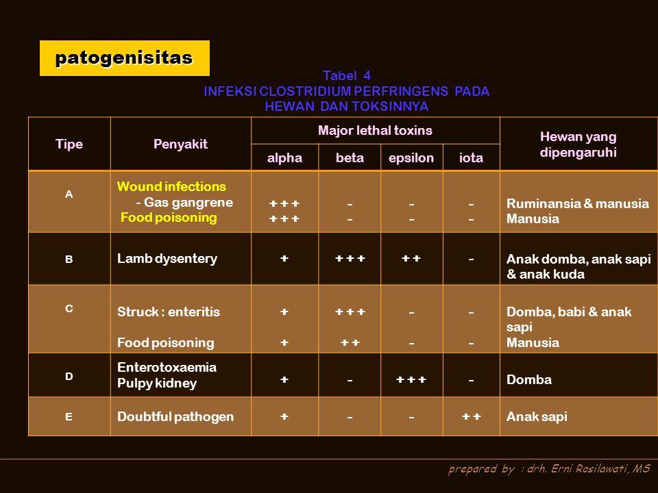 patogenisitas Tabel 4. INFEKSI CLOSTRIDIUM PERFRINGENS PADA HEWAN DAN TOKSINNYA. Tipe. Penyakit.