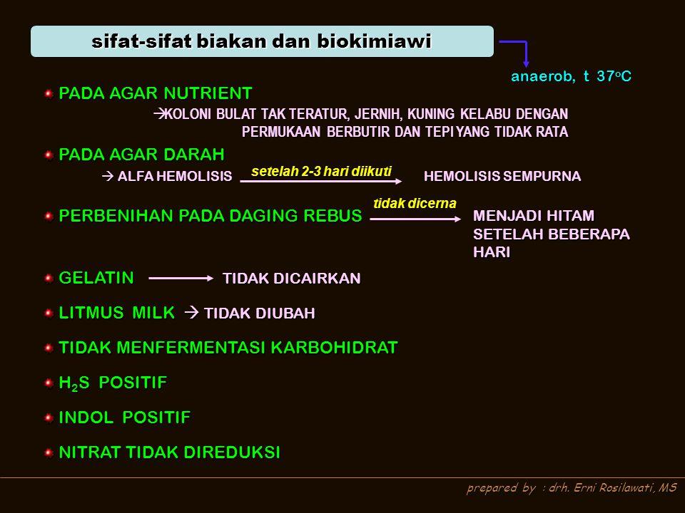 sifat-sifat biakan dan biokimiawi