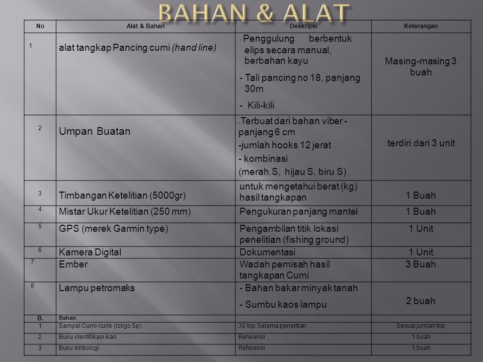 BAHAN & ALAT Umpan Buatan alat tangkap Pancing cumi (hand line)