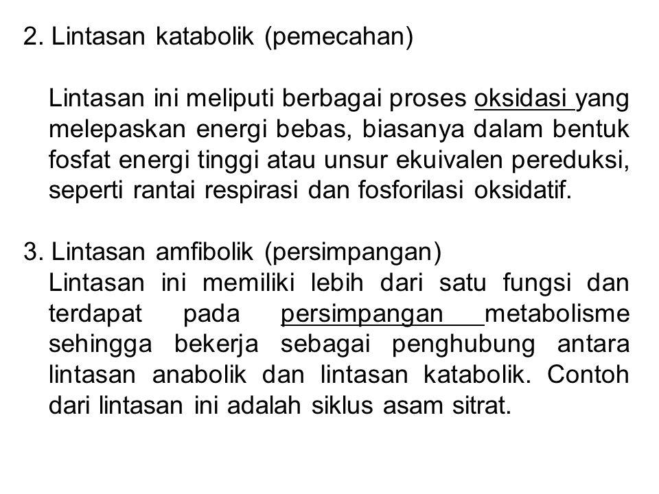 2. Lintasan katabolik (pemecahan)