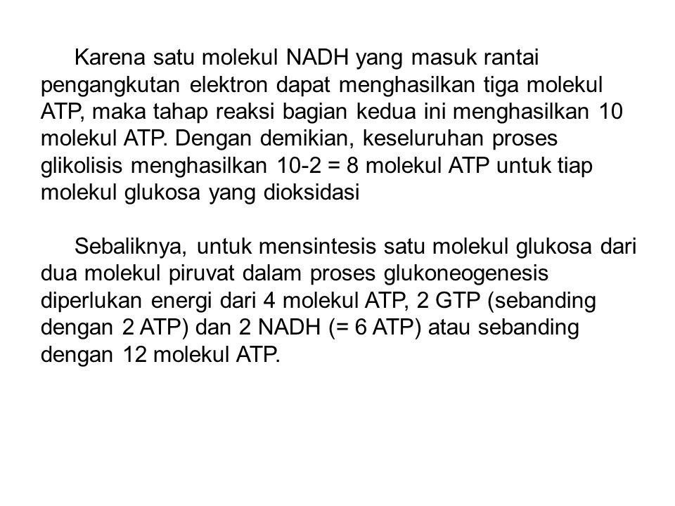 Karena satu molekul NADH yang masuk rantai pengangkutan elektron dapat menghasilkan tiga molekul ATP, maka tahap reaksi bagian kedua ini menghasilkan 10 molekul ATP. Dengan demikian, keseluruhan proses glikolisis menghasilkan 10-2 = 8 molekul ATP untuk tiap molekul glukosa yang dioksidasi