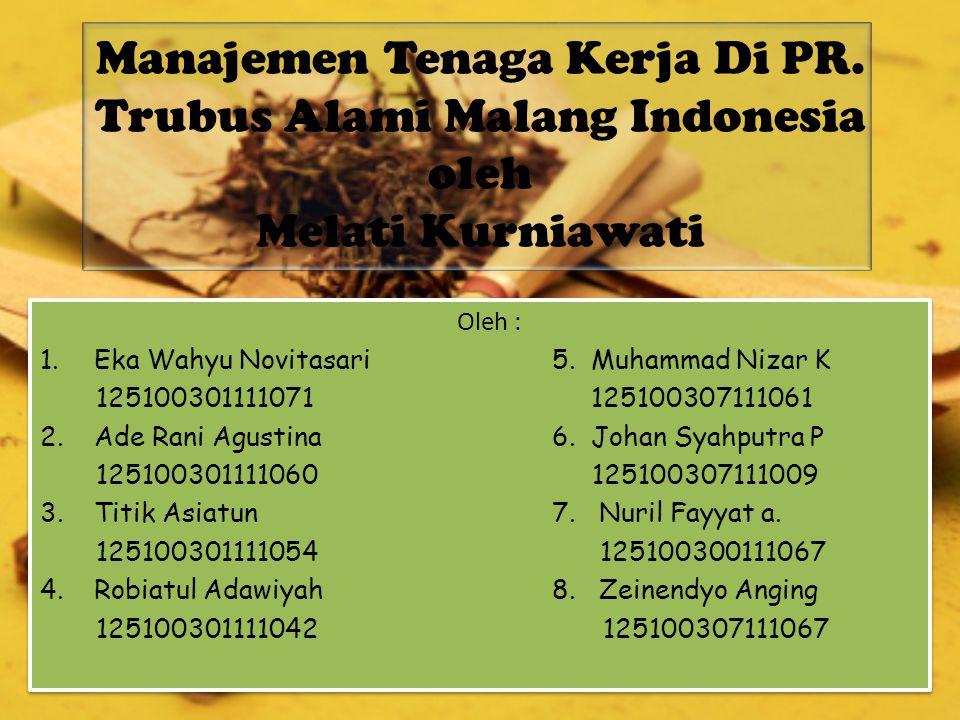 Manajemen Tenaga Kerja Di PR
