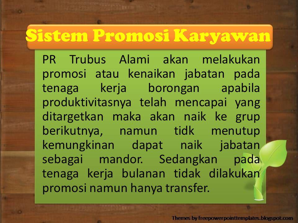 Sistem Promosi Karyawan
