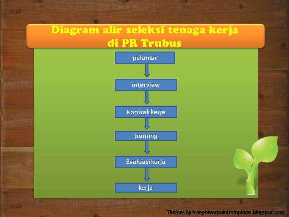 Diagram alir seleksi tenaga kerja di PR Trubus