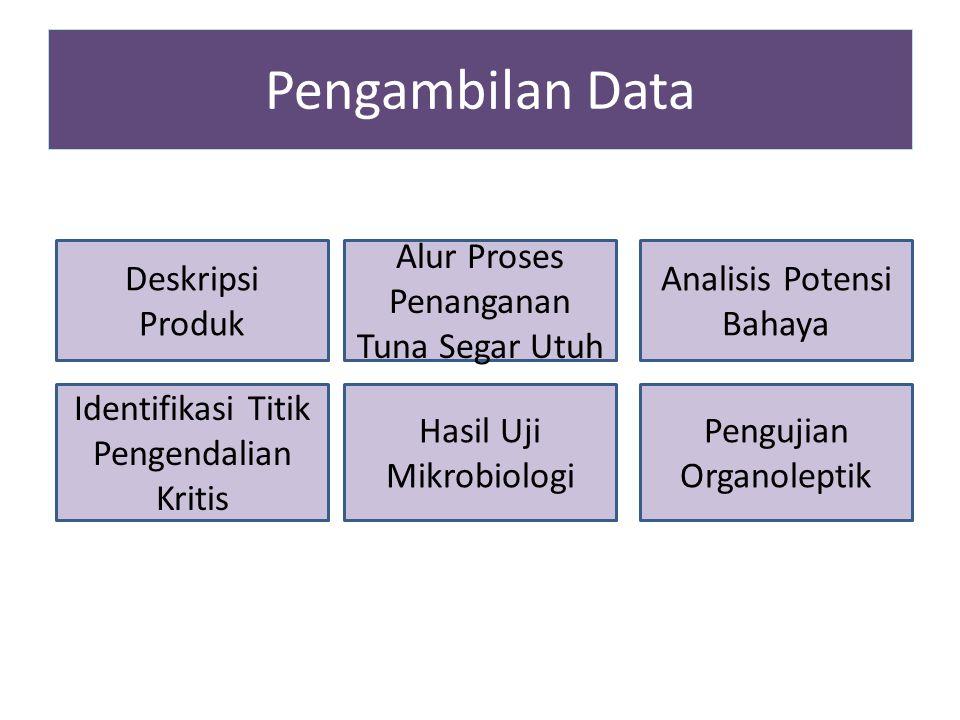 Pengambilan Data Deskripsi Produk