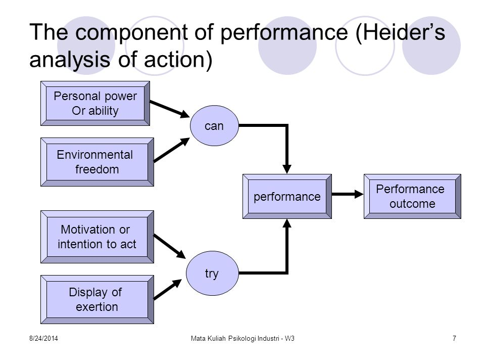 The component of performance (Heider's analysis of action)