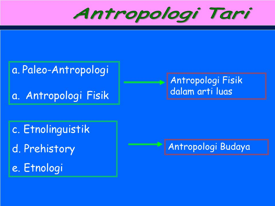 Paleo-Antropologi Antropologi Fisik c. Etnolinguistik d. Prehistory
