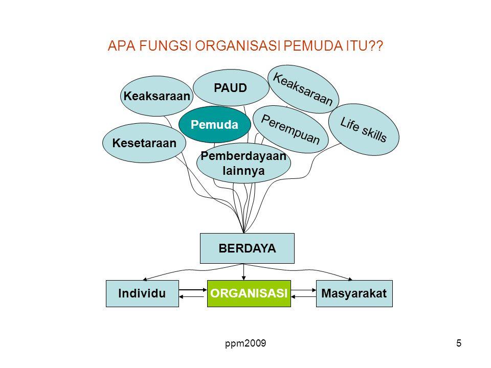 APA FUNGSI ORGANISASI PEMUDA ITU