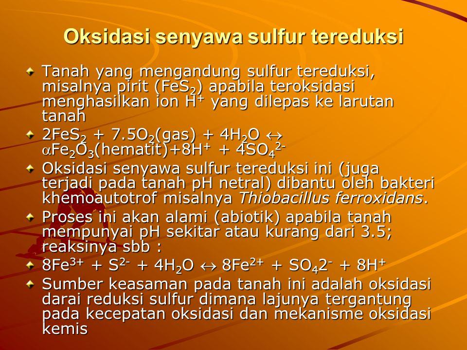 Oksidasi senyawa sulfur tereduksi