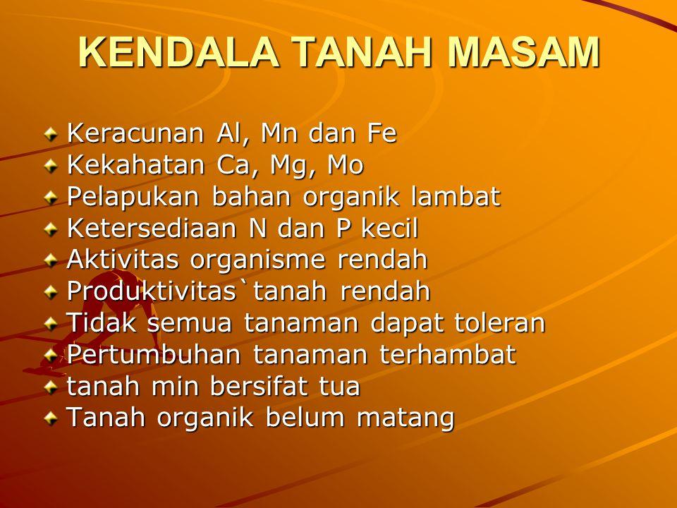 KENDALA TANAH MASAM Keracunan Al, Mn dan Fe Kekahatan Ca, Mg, Mo