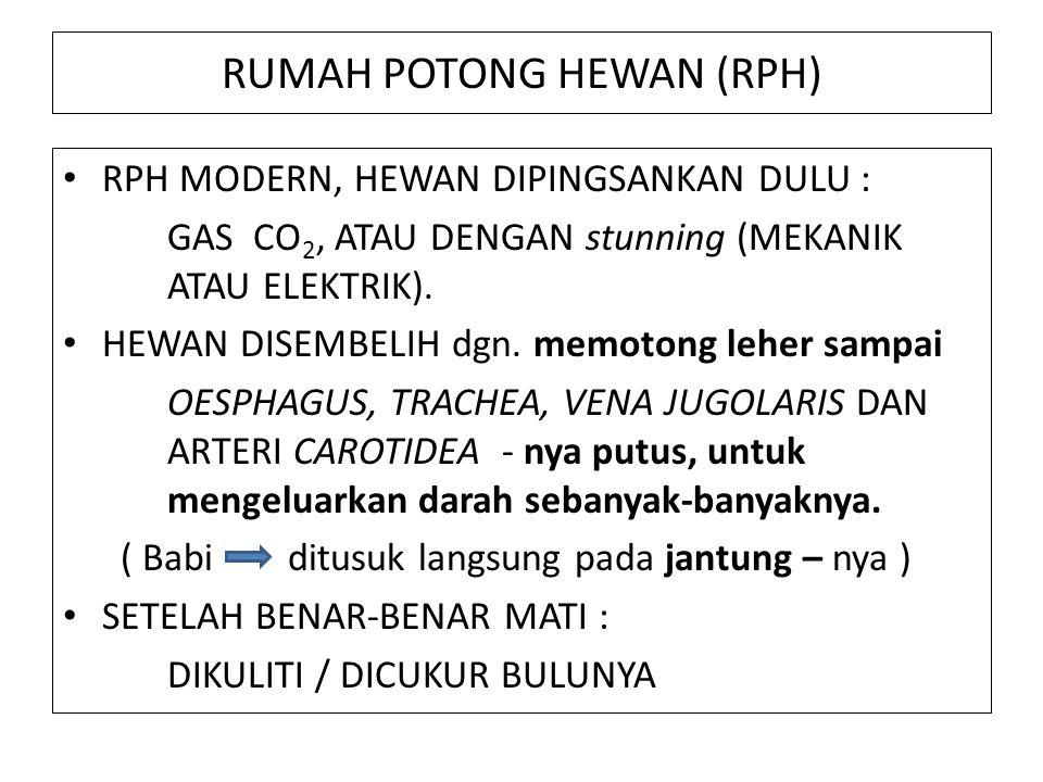 RUMAH POTONG HEWAN (RPH)