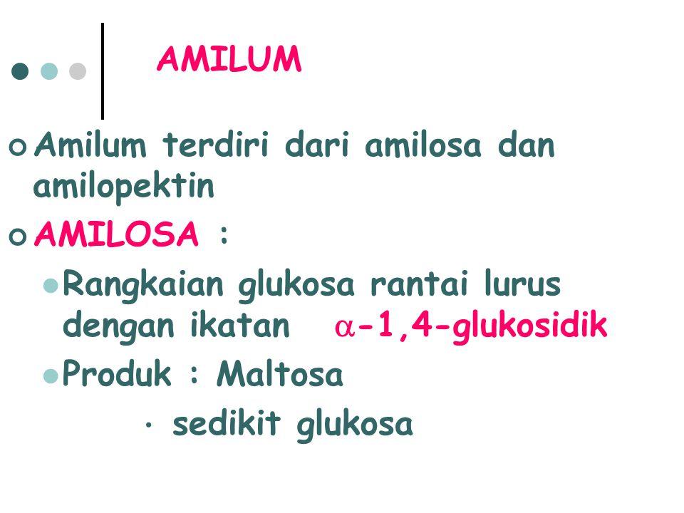 Amilum terdiri dari amilosa dan amilopektin AMILOSA :