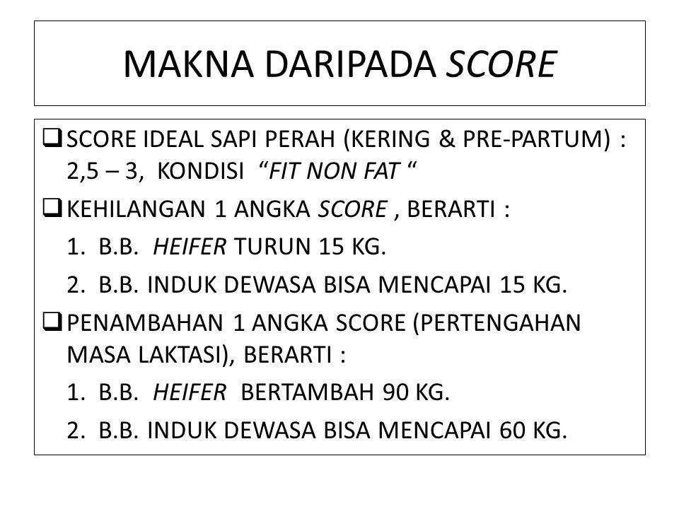 MAKNA DARIPADA SCORE SCORE IDEAL SAPI PERAH (KERING & PRE-PARTUM) : 2,5 – 3, KONDISI FIT NON FAT