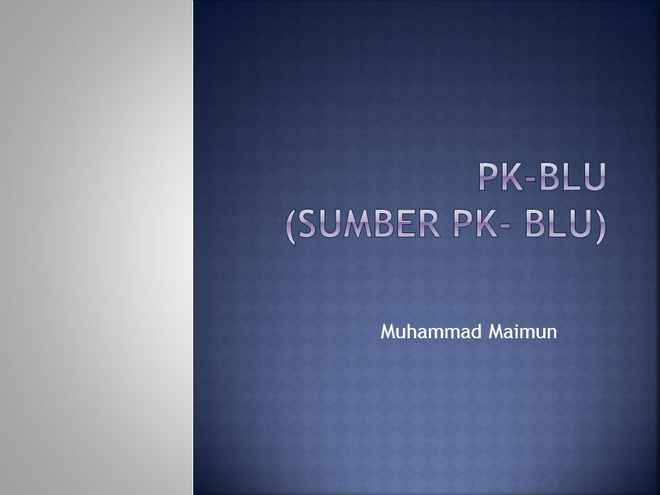 PK-BLU (Sumber PK- BLU)
