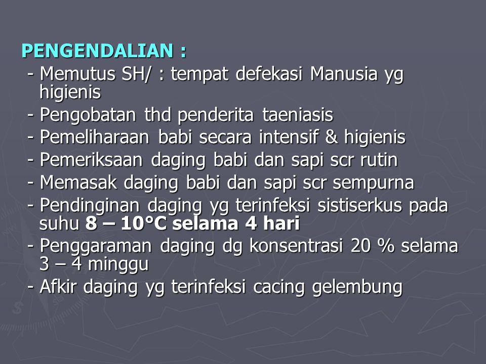 PENGENDALIAN : - Memutus SH/ : tempat defekasi Manusia yg higienis. - Pengobatan thd penderita taeniasis.