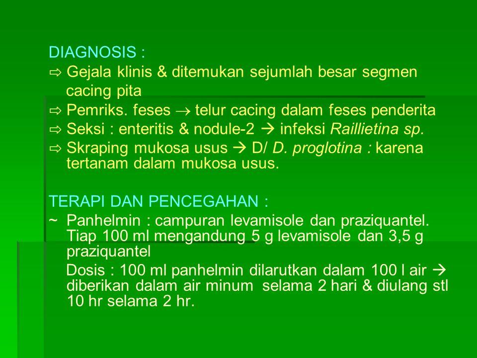 DIAGNOSIS : ⇨ Gejala klinis & ditemukan sejumlah besar segmen. cacing pita. ⇨ Pemriks. feses  telur cacing dalam feses penderita.
