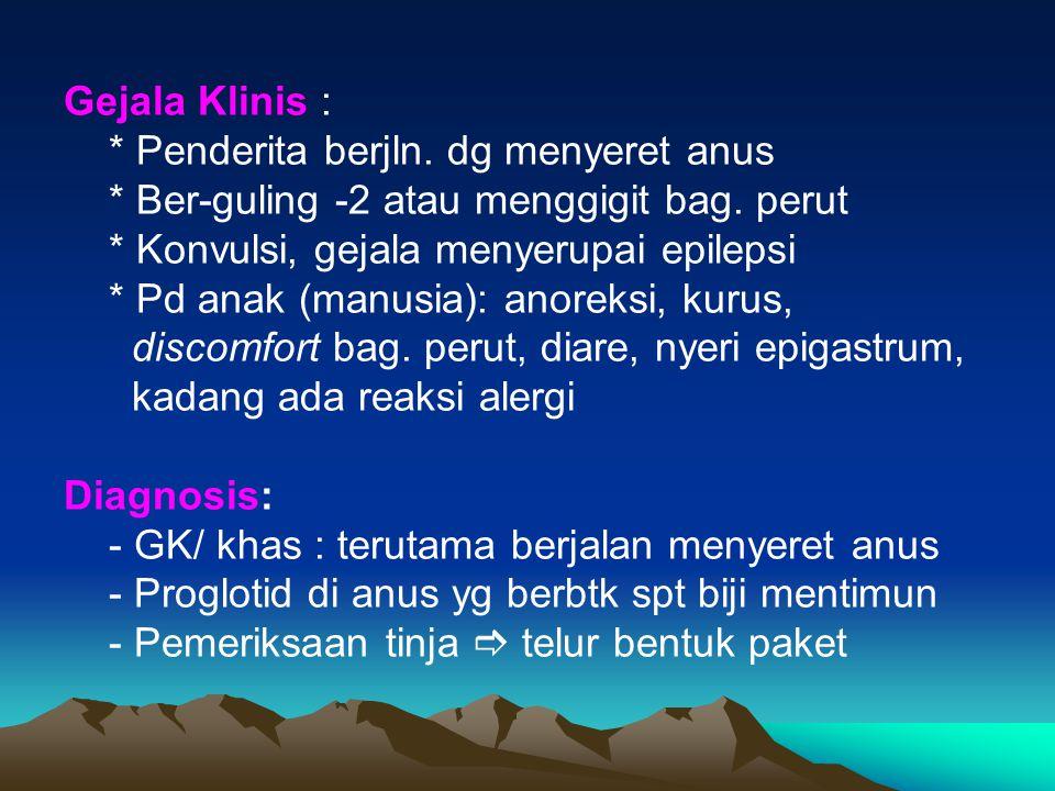 Gejala Klinis : * Penderita berjln. dg menyeret anus. * Ber-guling -2 atau menggigit bag. perut. * Konvulsi, gejala menyerupai epilepsi.