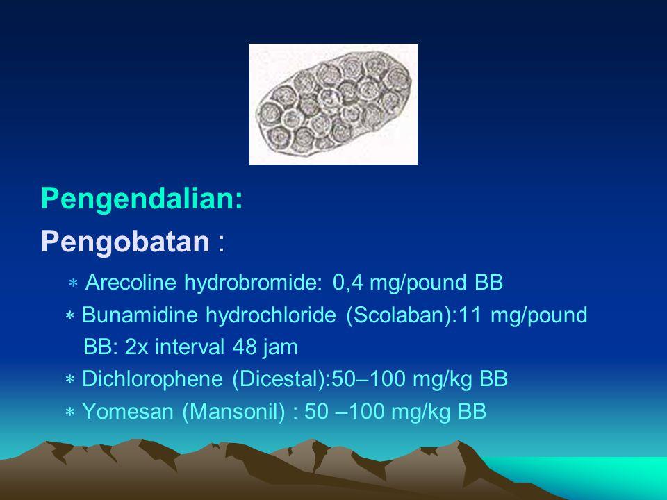 Pengendalian: Pengobatan :  Arecoline hydrobromide: 0,4 mg/pound BB