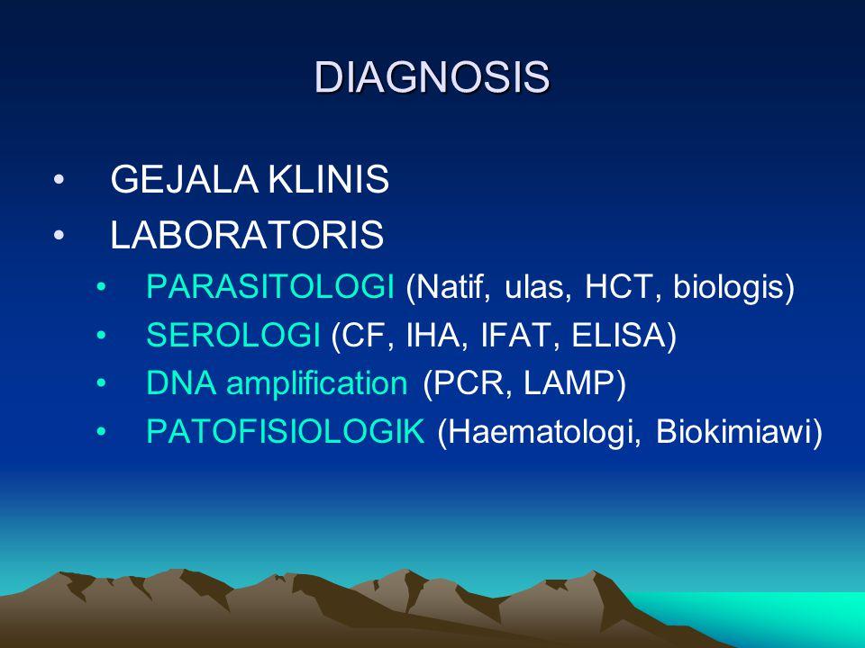 DIAGNOSIS GEJALA KLINIS LABORATORIS