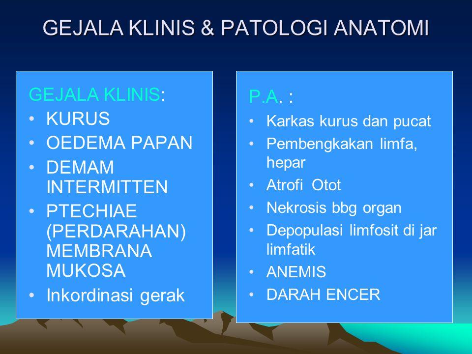 GEJALA KLINIS & PATOLOGI ANATOMI