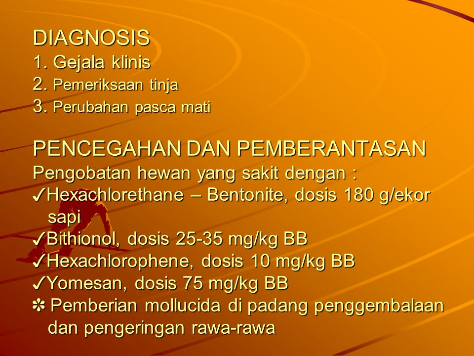 DIAGNOSIS 1. Gejala klinis 2. Pemeriksaan tinja 3