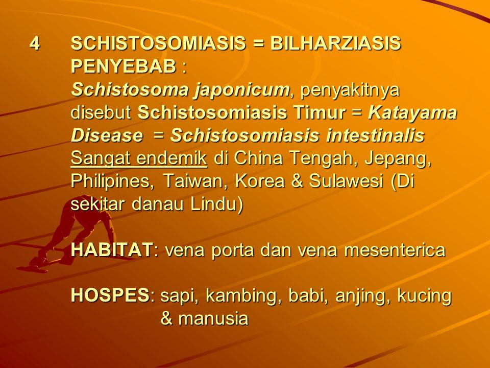 SCHISTOSOMIASIS = BILHARZIASIS PENYEBAB : Schistosoma japonicum, penyakitnya disebut Schistosomiasis Timur = Katayama Disease = Schistosomiasis intestinalis Sangat endemik di China Tengah, Jepang, Philipines, Taiwan, Korea & Sulawesi (Di sekitar danau Lindu) HABITAT: vena porta dan vena mesenterica HOSPES: sapi, kambing, babi, anjing, kucing & manusia