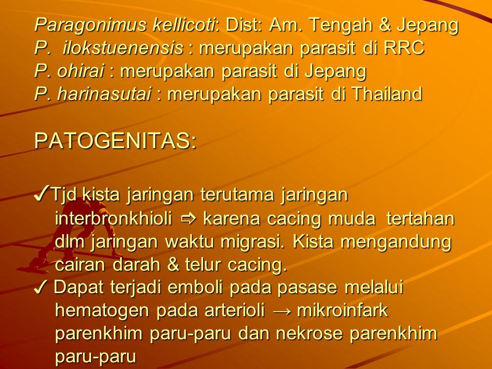 Paragonimus kellicoti: Dist: Am. Tengah & Jepang P