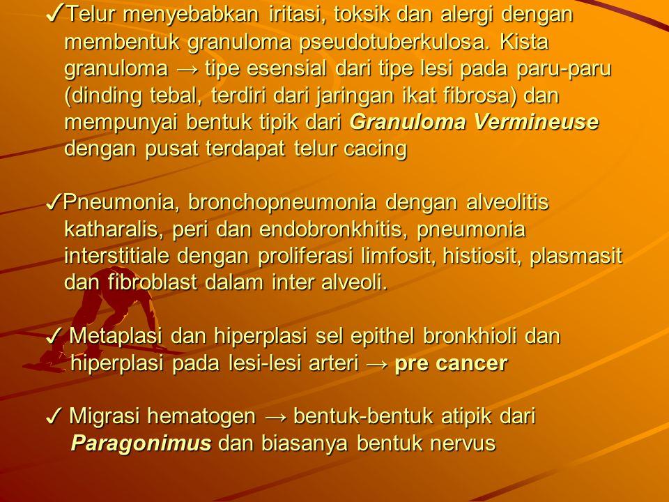 ✓Telur menyebabkan iritasi, toksik dan alergi dengan membentuk granuloma pseudotuberkulosa.