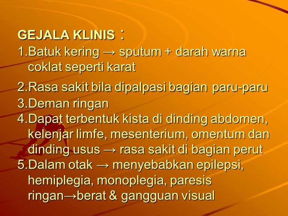 GEJALA KLINIS : 1.Batuk kering → sputum + darah warna coklat seperti karat 2.Rasa sakit bila dipalpasi bagian paru-paru 3.Deman ringan 4.Dapat terbentuk kista di dinding abdomen, kelenjar limfe, mesenterium, omentum dan dinding usus → rasa sakit di bagian perut 5.Dalam otak → menyebabkan epilepsi, hemiplegia, monoplegia, paresis ringan→berat & gangguan visual