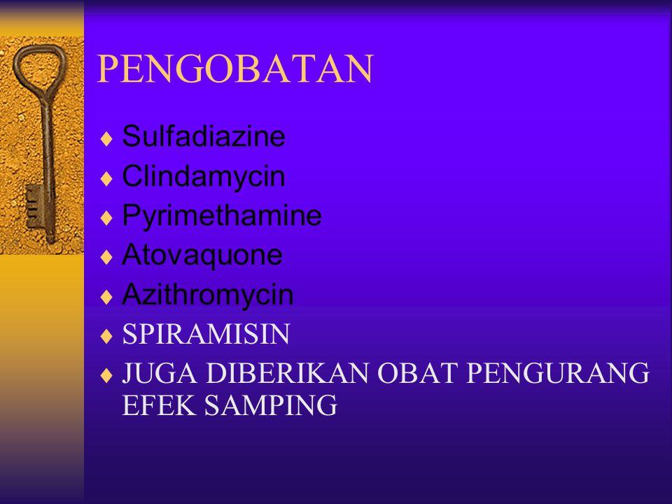 PENGOBATAN Sulfadiazine Clindamycin Pyrimethamine Atovaquone
