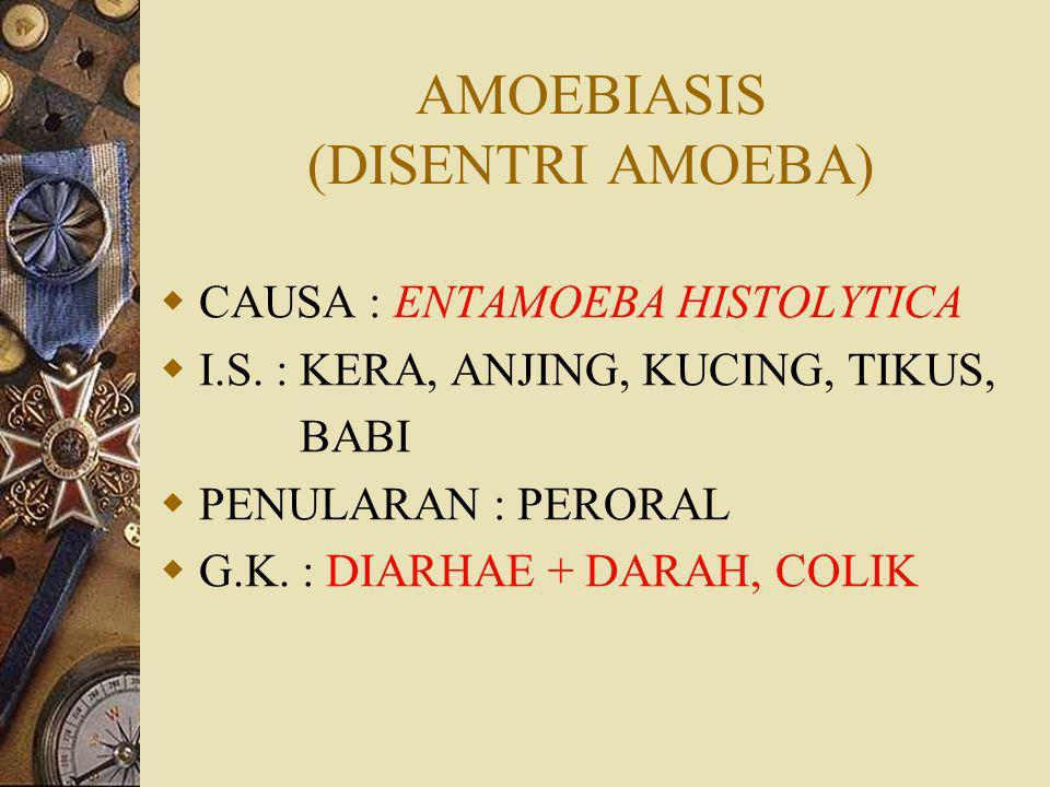 AMOEBIASIS (DISENTRI AMOEBA)
