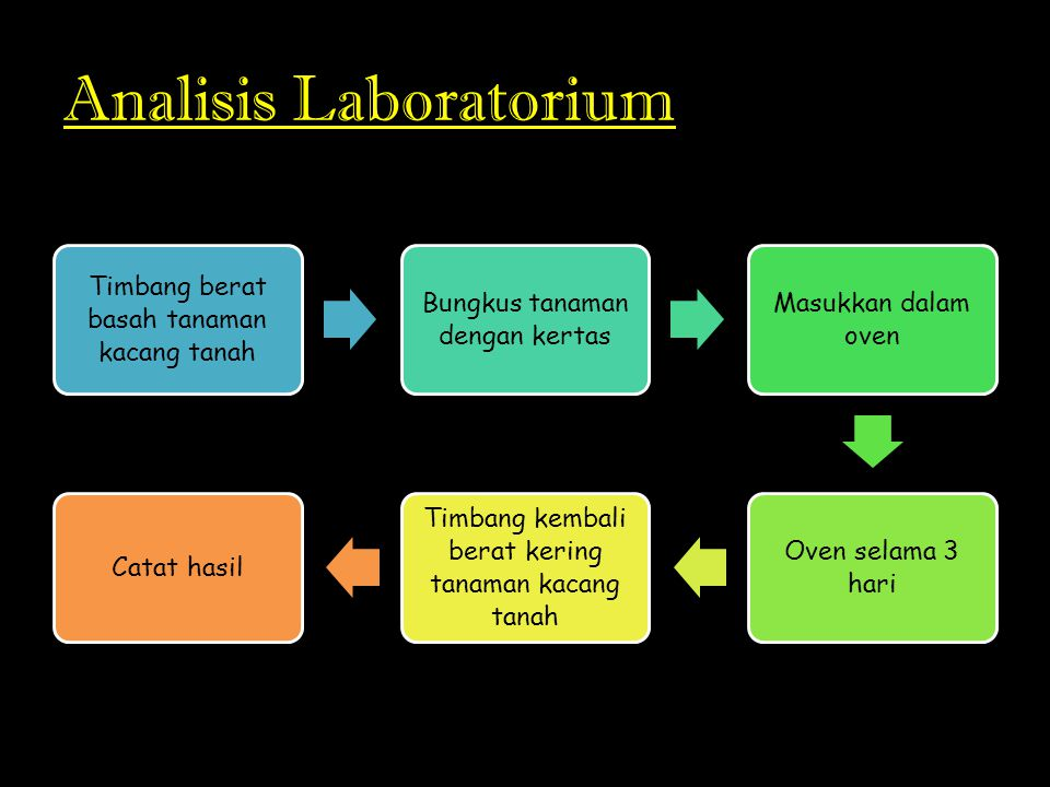 Analisis Laboratorium