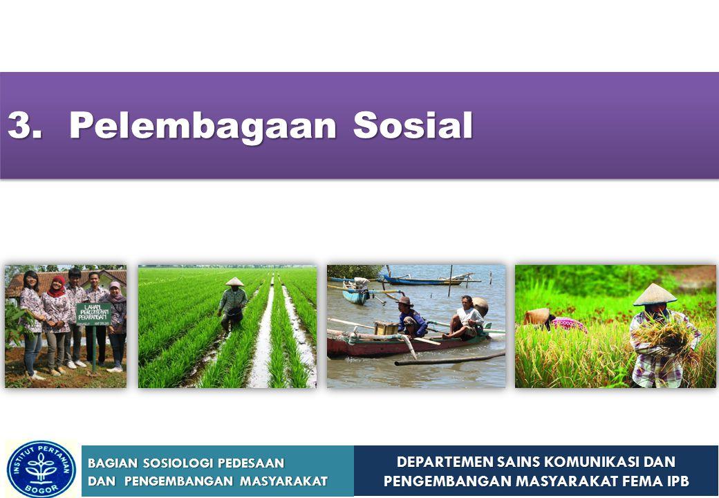 3. Pelembagaan Sosial